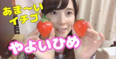 """とっても甘い苺「やよいひめ」食べた I ate sweet strawberry """"Yayoi-hime"""""""